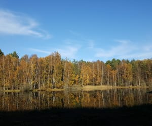 autumn, beautiful, and water image