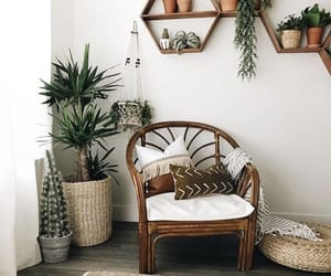 chair, plants, and wood image