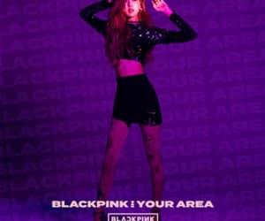 rose, korean, and kpop image