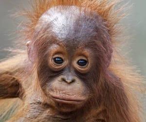 Bad hair day 😊