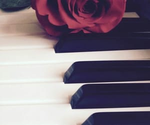 piano, rose, and flower image