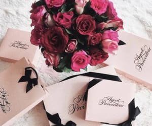 colors, flowers, and roses image