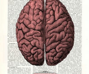 brain and quotes image