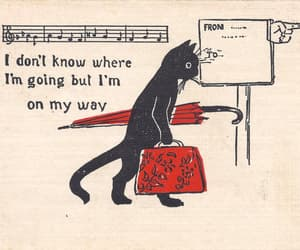 cat, quotes, and art image