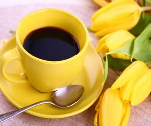 yellow, coffee, and tulips image