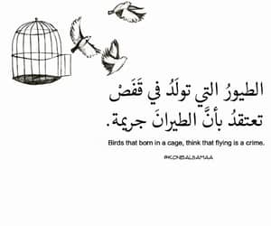 arabic, freedom, and quotes image