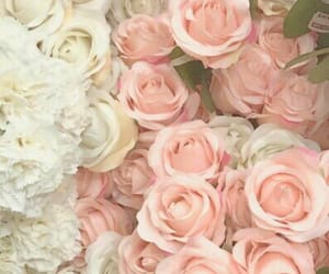 bouquet, bunch, and rose image
