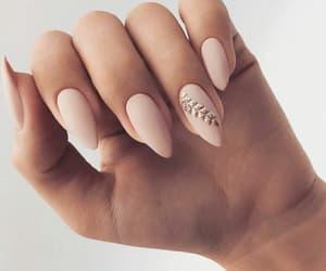 nail and rose image