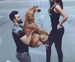 animals, Relationship, and relationship goals image