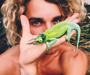 boy, jay alvarrez, and animal image