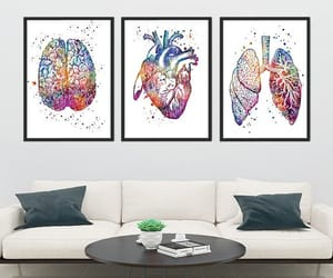 anatomy, lungs, and medical image