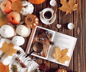 apple, leaves, and pumpkin image
