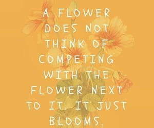 flowers, quotes, and yellow image