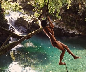 adventure, jungle, and exotic image