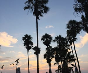 california, sunset, and venice image
