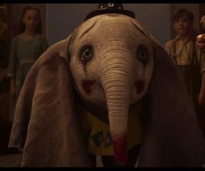 circle, elephant, and gif image