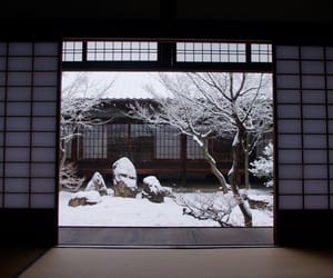 japan, winter, and cold image