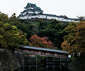architecture, japan, and nature image