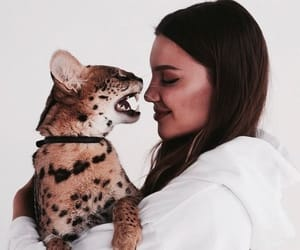 girl, animal, and cat image