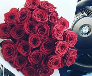 bmw, rose, and flowers image