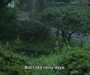 rain, green, and quotes image