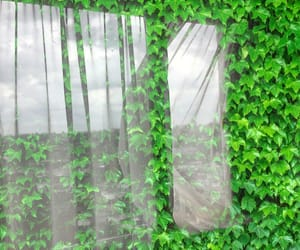 art, artistic, and natural image