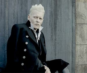 gif, johnny depp, and fantastic beasts image