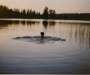 girl, lake, and nightfall image
