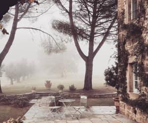al fresco, garden, and misty image