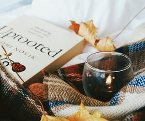 book, candle, and blanket image