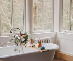 bath, plant, and soaps image