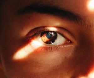 eyes, brown, and eye image