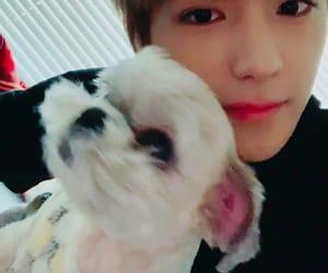 kpop, jaehyun, and hyunjae image