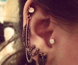 piercing, earrings, and owl image