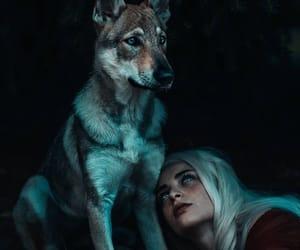 animal, girl, and wolf image