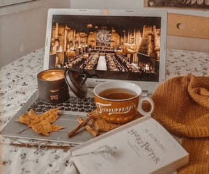 looks like a perfect afternoon 🍂❤️