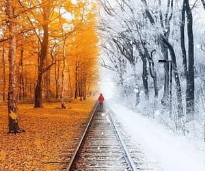 beautiful, enchanting, and fantastic image