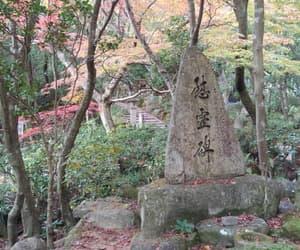 autumn, garden, and japan image