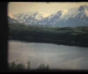 film, nature, and frame image