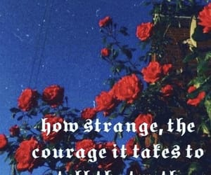 courage, feeling, and quotes image