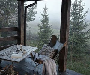 nature, autumn, and book image