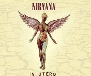 nirvana, in utero, and grunge image