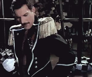 music, Queen, and Freddie Mercury image