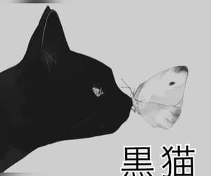 black, 黒猫, and kuroneko image