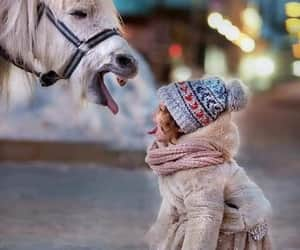 cute animals, hours, and children image