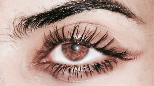 article, articles, and eyelash curler image