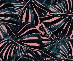 palm leaves, pink, and teal image