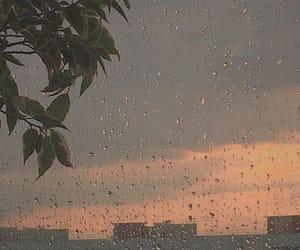 rain, aesthetic, and rainy image