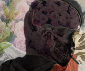 1999, flower, and glitch image