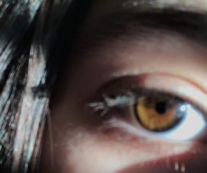 brown, cool, and eyebrow image